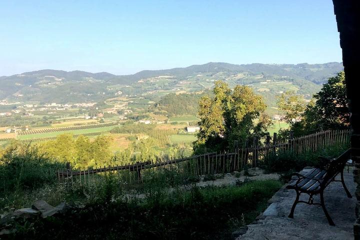 Villa Dona Tella;  former wine farm with pool