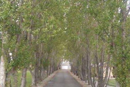 Serenity Grove - House