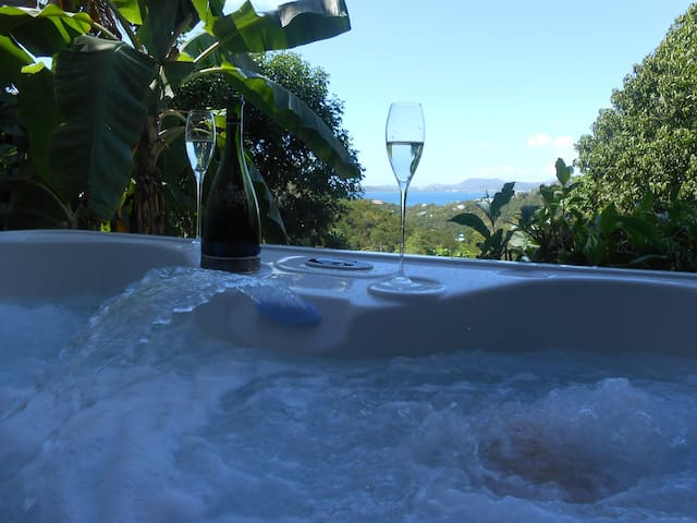 Romantic 1BR with Private Hot Tub and View & A/C - St. John - Villa