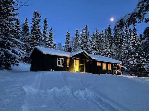 Trivelig hytte i nærheten av Rypetoppen klatrepark