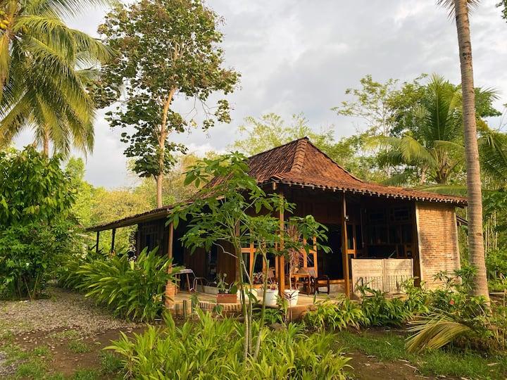 Omah nDekso Guesthouse