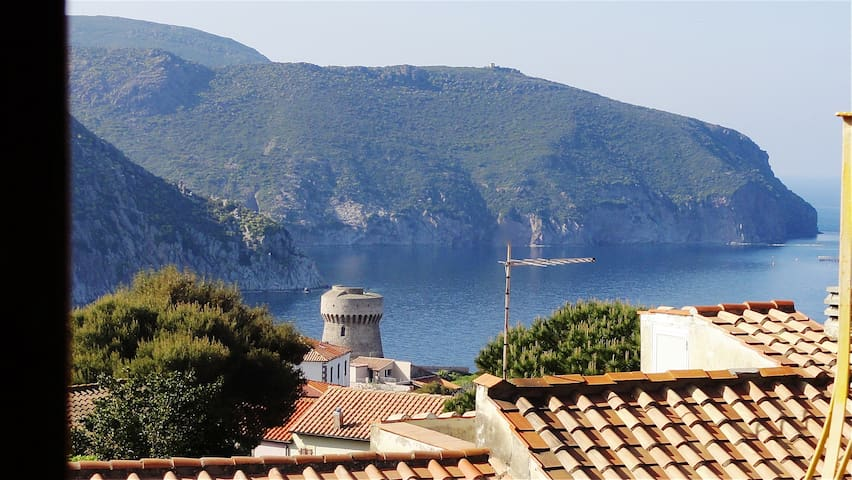 with Sea view in Wild Tuscan Island - Capraia Isola - Casa