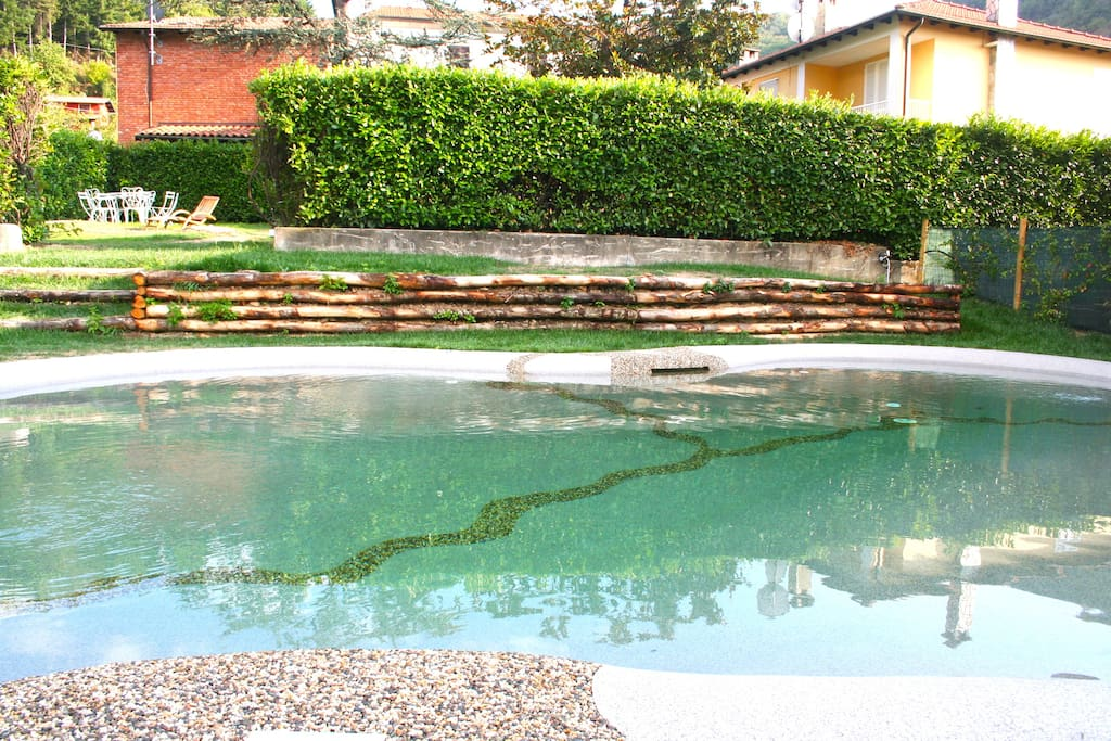 Our natural pool, with whirlpool
