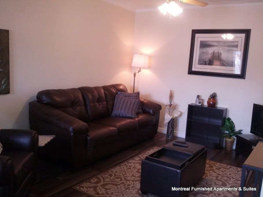 Living room with LCD tv and movie channels, telephone line within USA and Canada