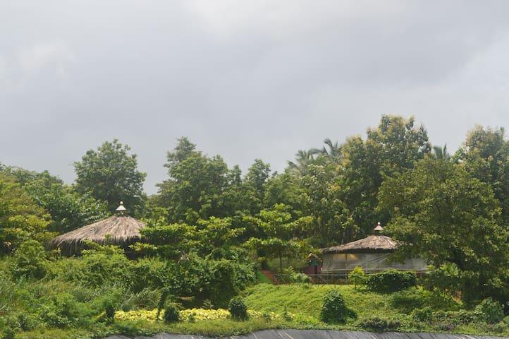 Aher Spice Farm/Goa Agri Tourism
