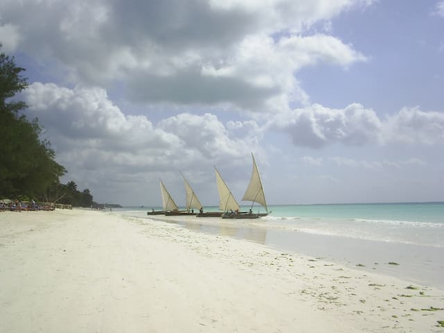 Ngalawa trips from Kiwengwa shore