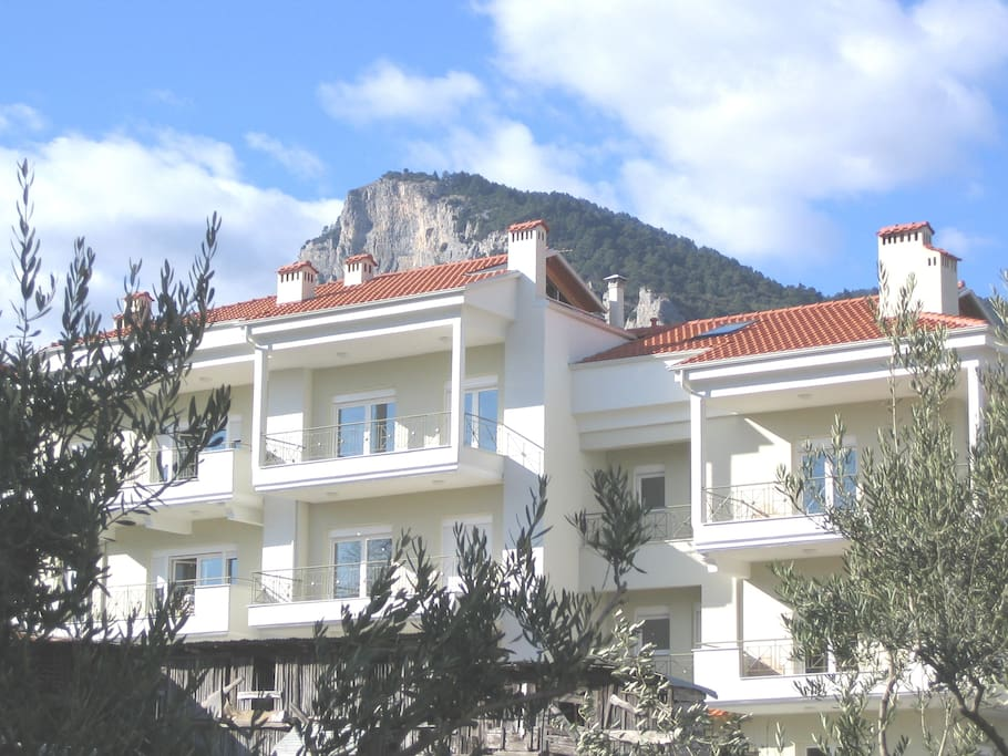 Our appartement at the top