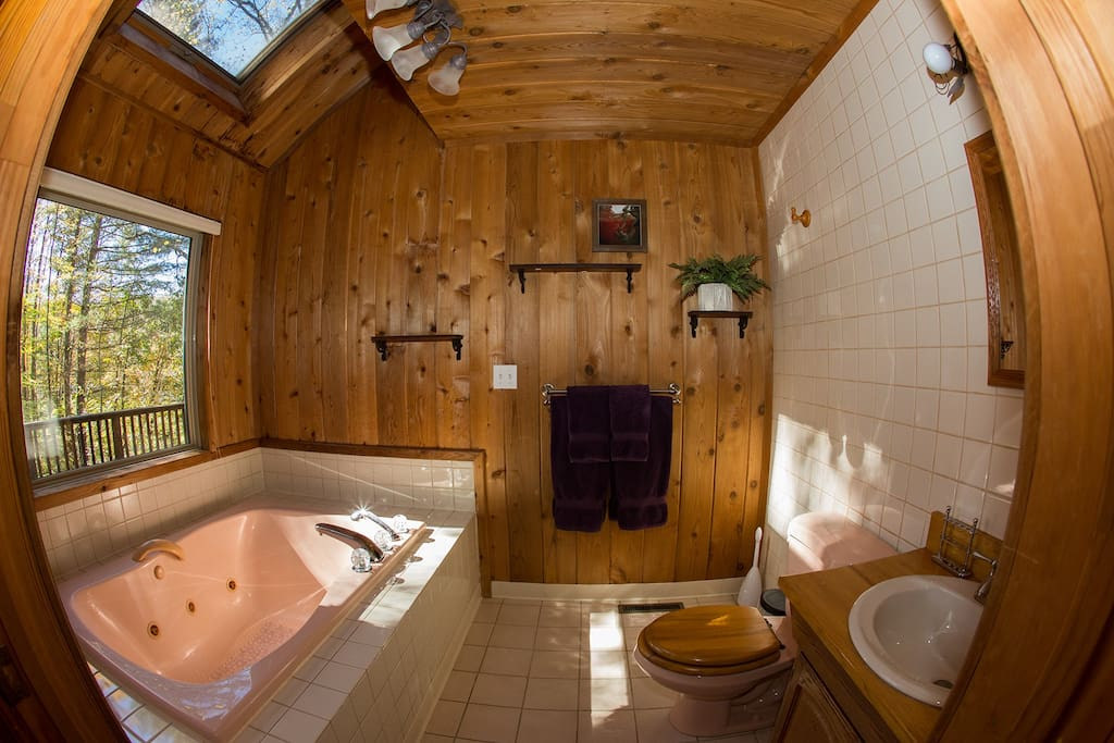 Master bath with large Jacuzzi