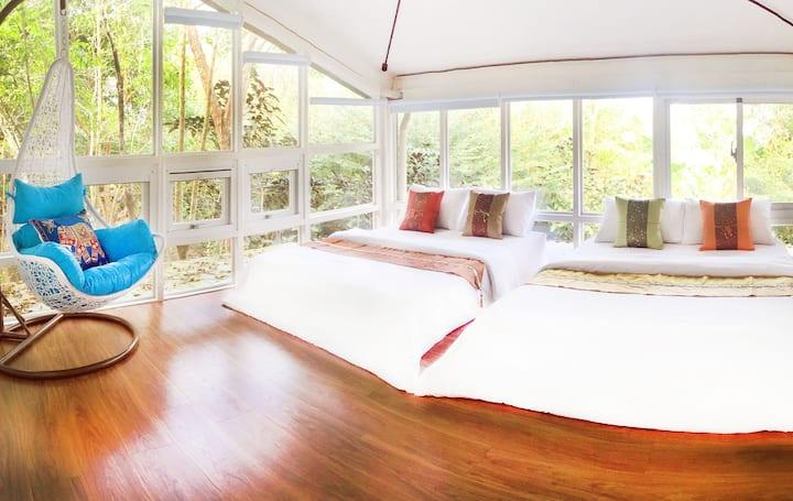 新上架!(確實消毒清潔)森林包棟玻璃屋6人房,空間獨立隱私自在,空氣清新享受芬多精,沐浴森林陽光中