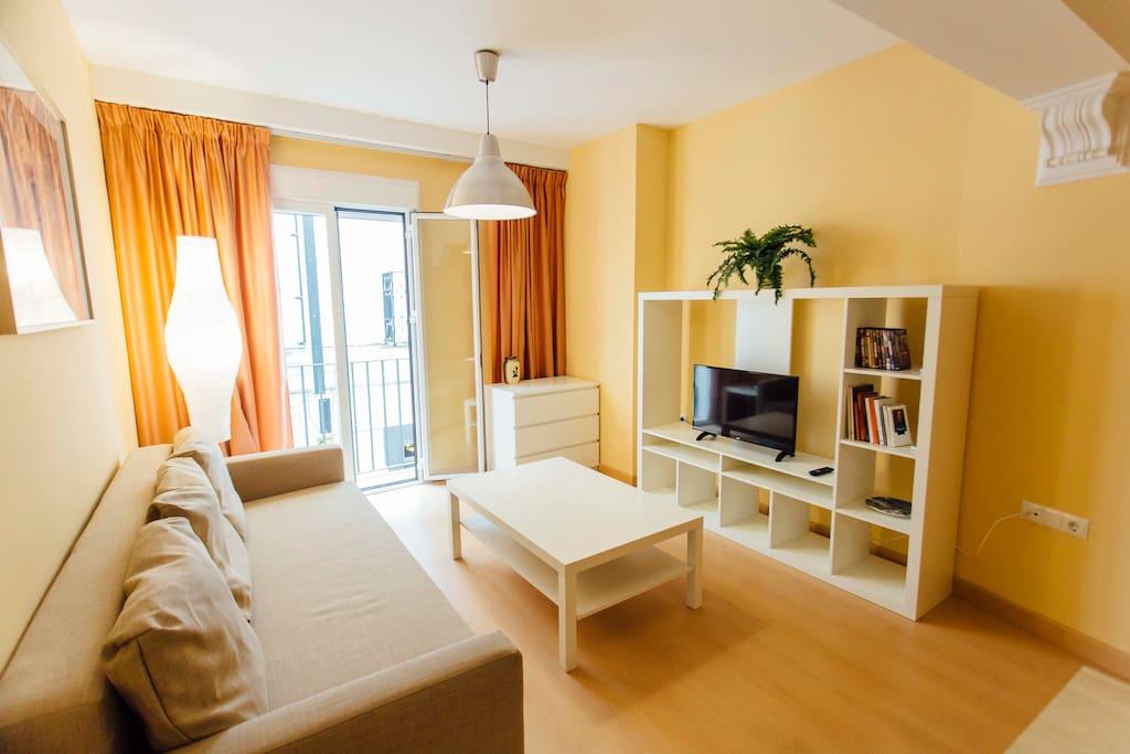 Salón/Living room
