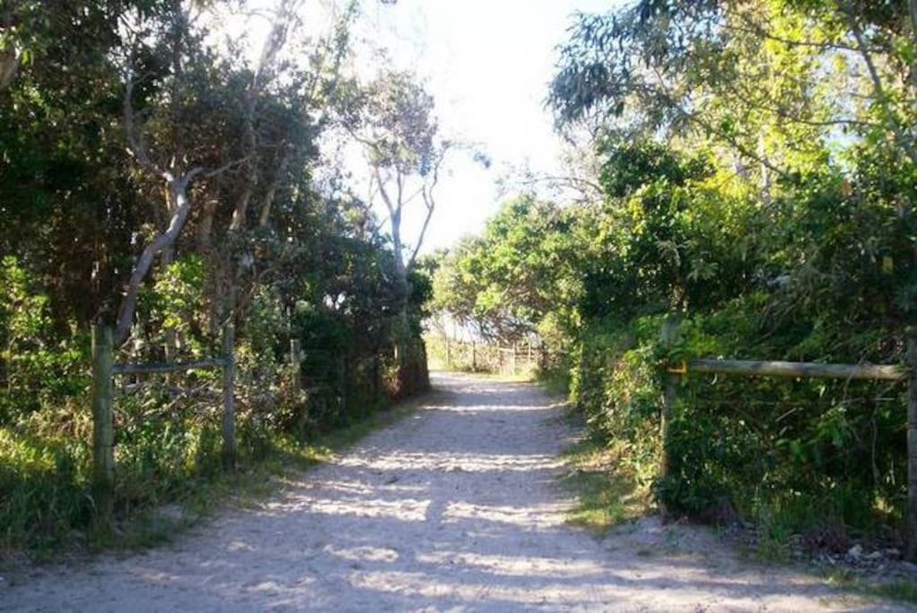 Track down to Mudjimba Beach