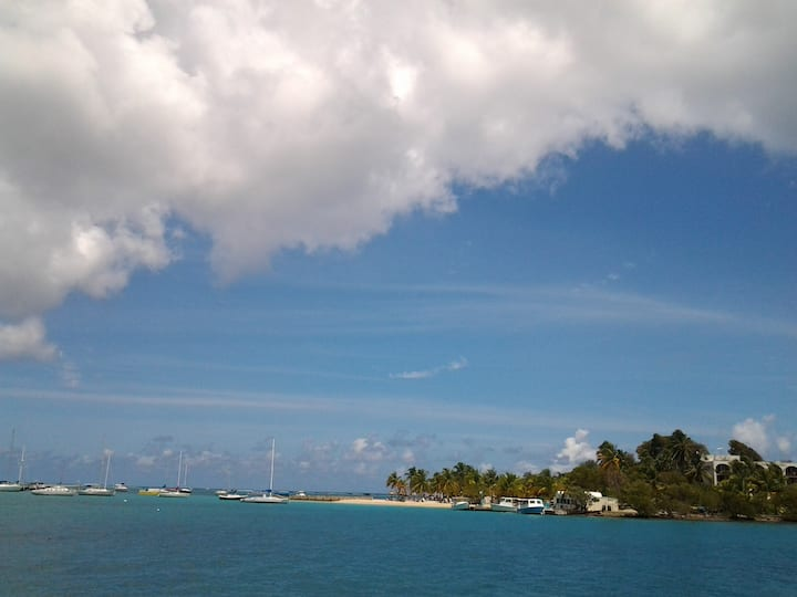 Relaxing Caribbean Getaway Home II