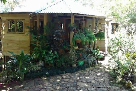 """Mel's Botanical Retreat """"Garden Oasis"""" 2 bedroom"""