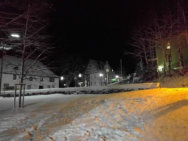 Der Burggarten im Winter