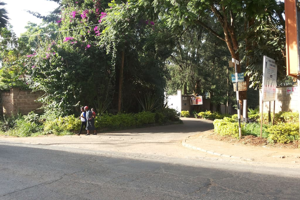 Entrance to Bamboo Lane, from Riara Road