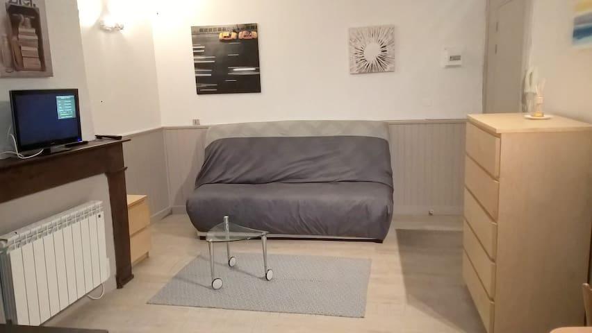 Studio flat - Gaillac city center