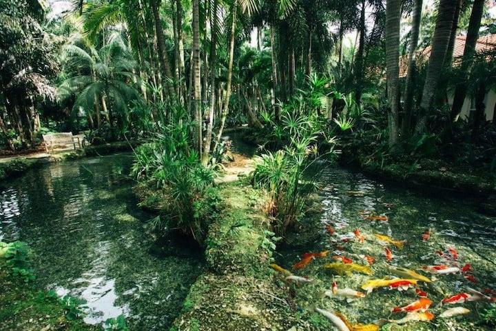 The Palms Estate