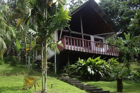 Jungle Cabin, Mira Olas Pavones - Pavones - Ξυλόσπιτο