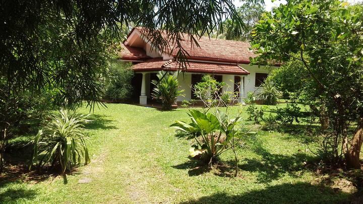 Villa Eco Garden