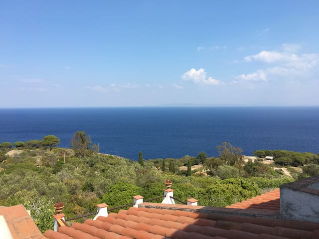 Super comfortable apartment with amazing view - Isola del Giglio - Leilighet