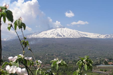 Family Eco Farm Facing Etna&Ocean - Piedimonte Etneo - Naturstuga
