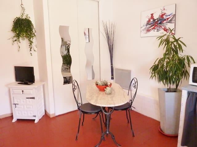 STUDIO TERRASSE en CAMARGUE SAUVAGE - Arles