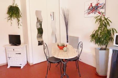 STUDIO TERRASSE en CAMARGUE SAUVAGE - Arles - Apartamento