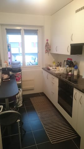 Nice Room in Bussigny - Bussigny - Apartment