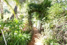 Vine covered Arch leading up to Guesthouse Entrance - Photo by Ari Abramczyk