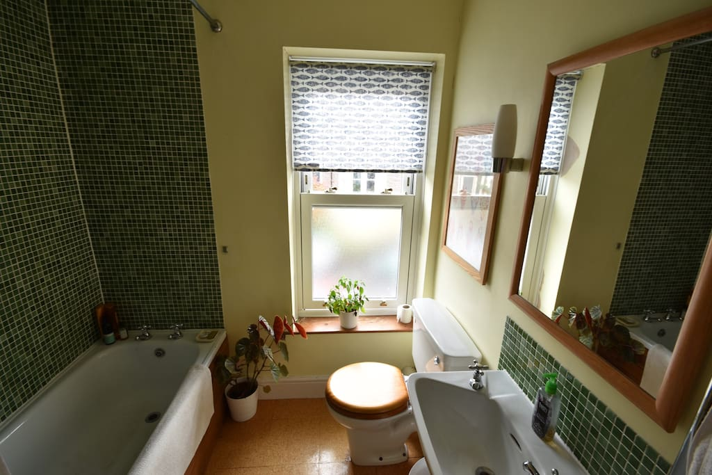 Shared bathroom with a fantastic power shower.  We also provide towels and a hairdryer