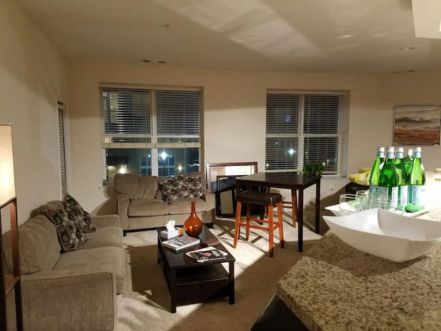 Spacious, Luxurious 1BR near IAD - Herndon - Apartemen