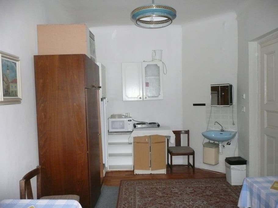 The room is equipped with a microwave, refrigerator, small stove, etc.