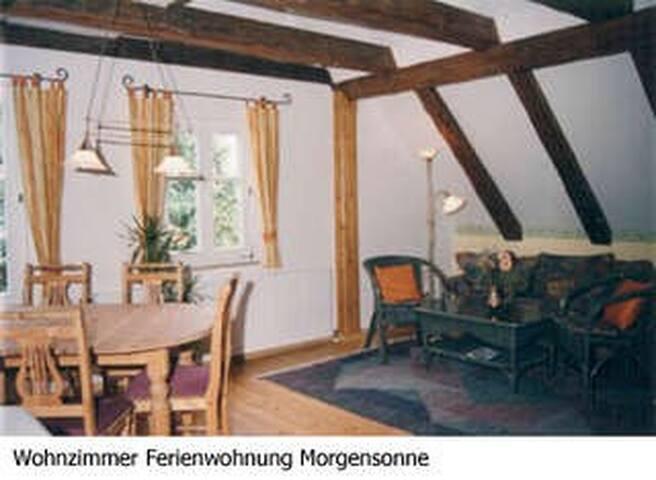 Morgensonne bei Rothenburg/Tauber