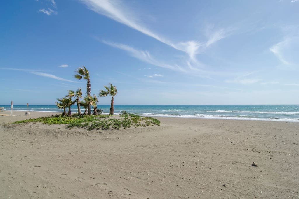 Beach directly in front of apartment - La playa enfrente.
