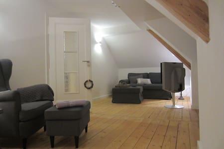 Helles Altbau-Dachgeschoss | 45 m² | 2,5-Zimmer