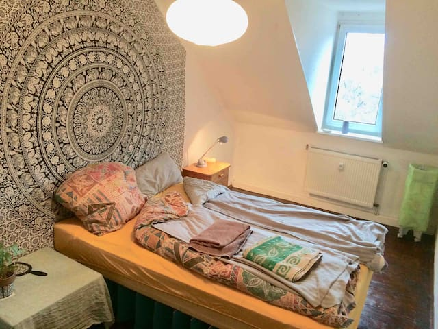 room in friendly&cool flat in Leipzig Connewitz