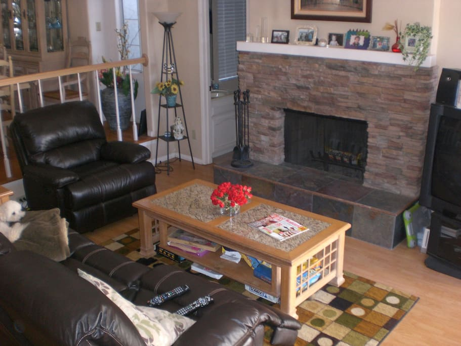 Family Room with fireplace, reclining sofa and chair. Dog not included!