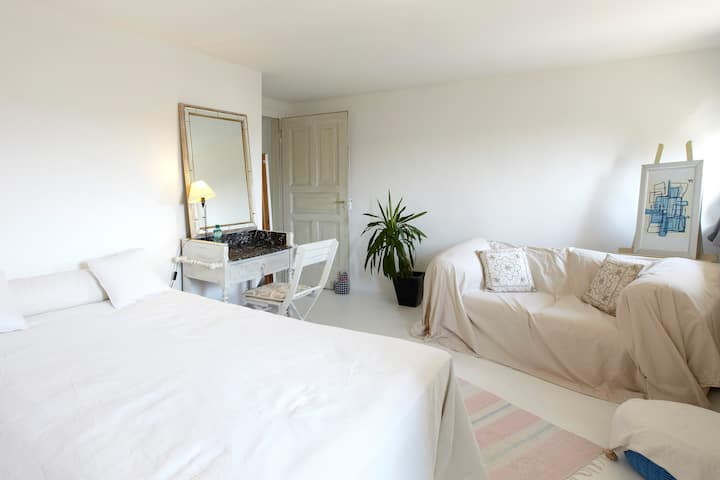 1 big double room with private bath