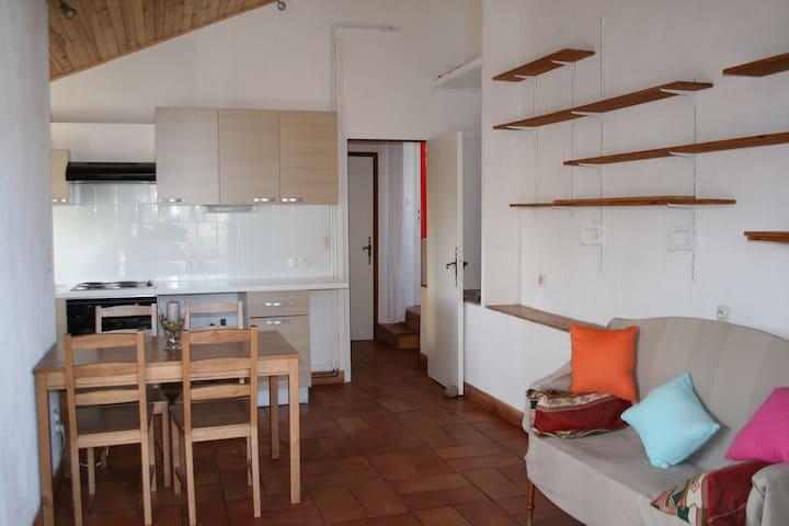 Appartement St Remy de Provence - Saint-Rémy-de-Provence - อพาร์ทเมนท์