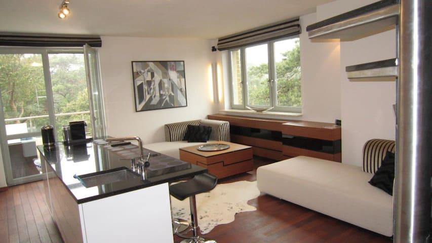 Modern Apartment 2 terraces+3bikes - Jurata