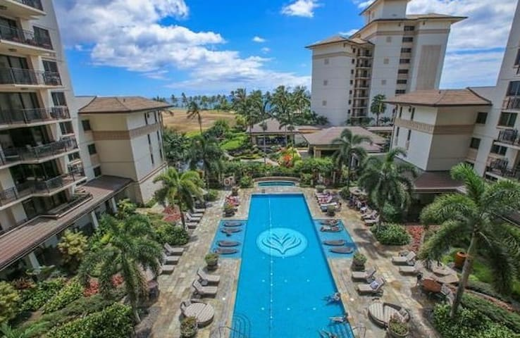 """View of quiet """"lap"""" pool from lanai of our unit"""