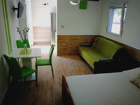 Studio Apartment Green