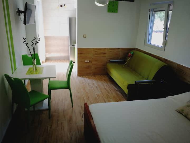 Studio Apartment Green