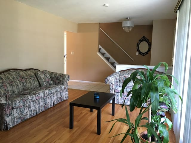 Spacious colonial home 2br - Southfield - Huis