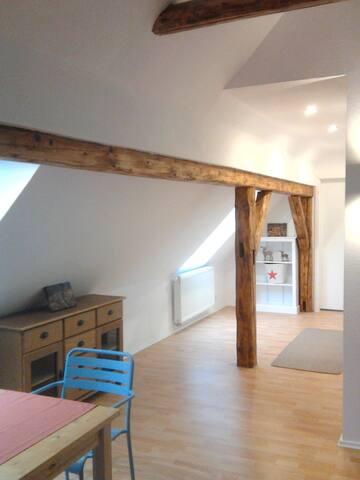 NEU: BergBlick -175 qm Ferienloft - Sankt Andreasberg - Loft