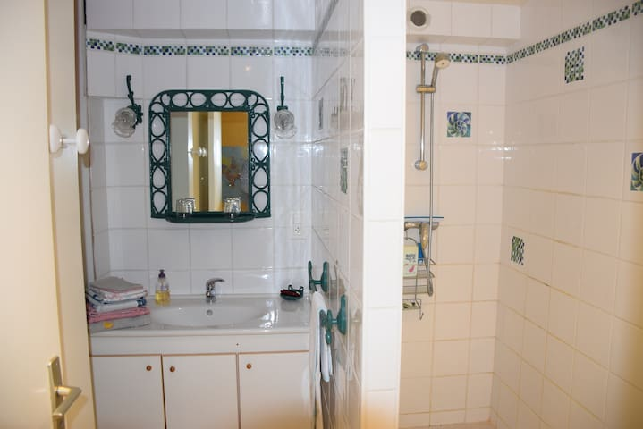 Salle d'eau avec lavabo et douche italienne