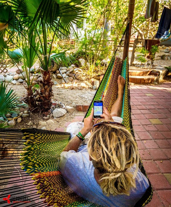hammock time with great wifi!