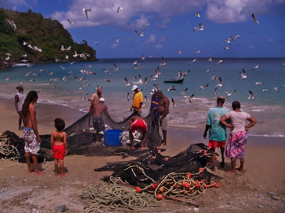 Local Beach Scene, Charlotteville, Tobago