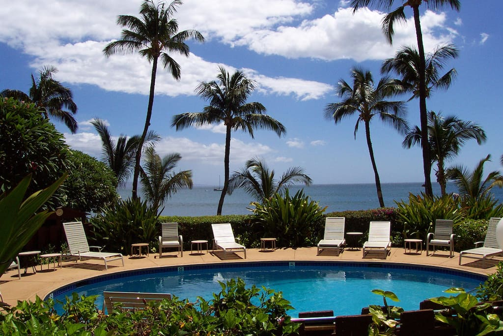 Sit at the pool just steps from Sugar Beach in Kihei