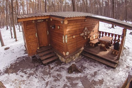 House in the woods for 2, Voronezh - ボロネジ - B&B/民宿/ペンション